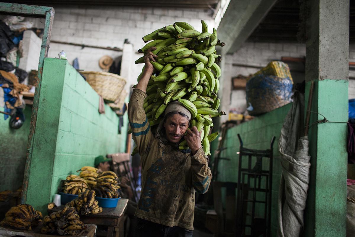 Un cargador de plátano cobra desde 3 hasta 5 quetzales por cada traslado de producto, en función de la distancia recorrida